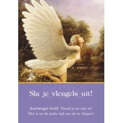 Aartsengelen Orakelkaarten - Doreen Virtue