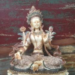 Beeld Witte Tara